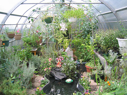 Mystical Herbs Greenhouse Inside